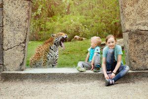 parken zoo barn